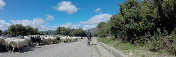 Giro del Mare – Spring 2019